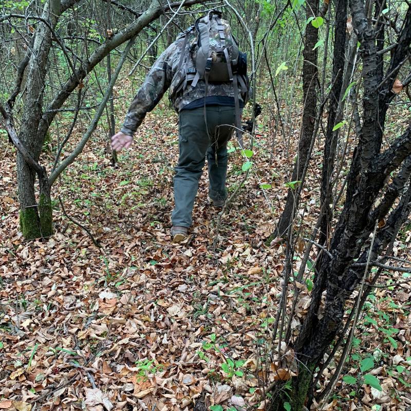following a doe blood trail